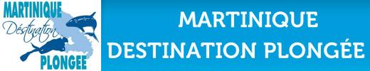 martinique-destination-plongée-520-100