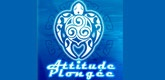 – ATTITUDE PLONGEE –