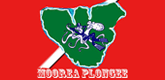 – MOOREA PLONGEE –