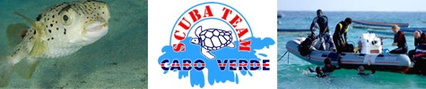 scuba-team-475x100